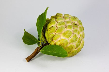 sweetsop: Custard Apple with Leaves Stock Photo