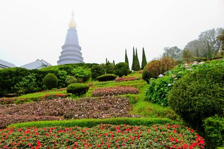 flower garden and stupa at inthanon national park in the mist, chiang mai, thailand Stock Photo - 17597324
