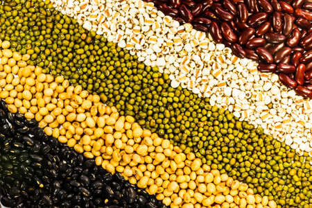 Various kinds of different beans photo
