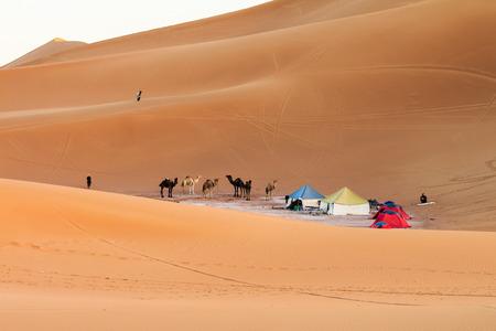 desierto del sahara: Campamento en el desierto del sahara, marruecos Foto de archivo