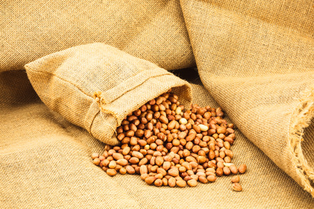 sac: Raw peanuts in a ramie sac