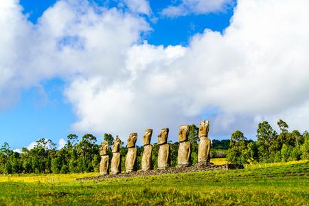 moai: Moai en Ahu Akivi en la Isla de Pascua, Chile Foto de archivo