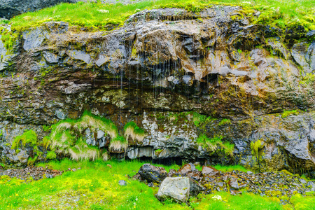seeping: Picture of water seeping through the volcanic rock which is commonly seen at the mountains in Iceland