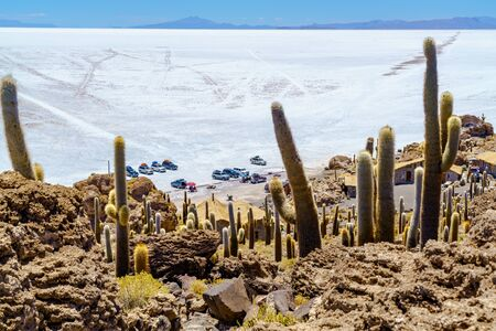 incahuasi: Tourists parking car at Incahuasi Island in Salar de Uyuni Salt Flat for sightseeing and having lunch
