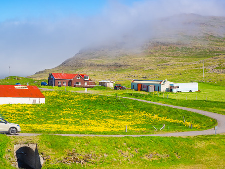 Icelandic landscape of a mountain with a field of yellow flowers in a village Stock Photo