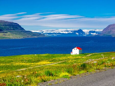 Beautiful view of snow mountain and a red roof house on the seaside with the field of yellow flowers in Iceland
