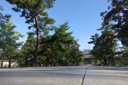 low angle views: a path to the Japanese temple Stock Photo