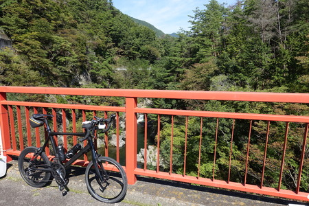 mini bike: a carbon bike, mini velo standing on a bridge with a red railing