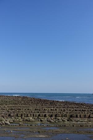 washboard: Aoshima Island, surrounded by Devils Washboard, Miyazaki, Japan