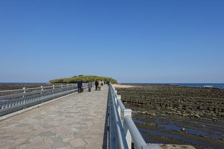 surrounded: Bridge to Aoshima Island and at the Shrine, surrounded by Devils Washboard, Miyazaki, Japan