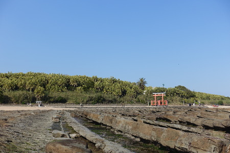 washboard: A gate of Aoshima at the Shrine in Aoshima Island, Devils Washboard surrounded, in Miyazaki, Japan Editorial