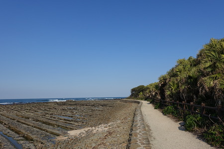 washboard: A path in northern part of Aoshima Island at opposite side of Aoshima at the Shrine, surrounded Devils Washboard in Miyazaki, Japan