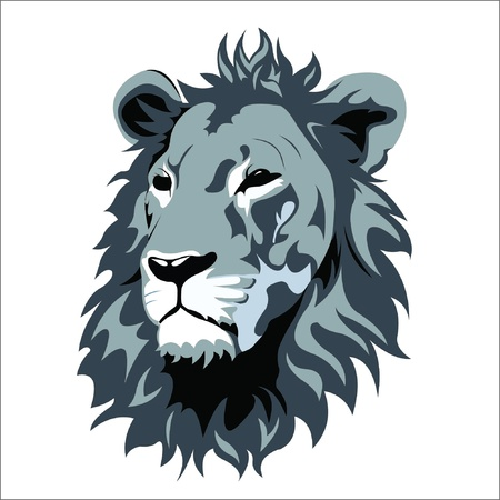 head of lion: lion Illustration