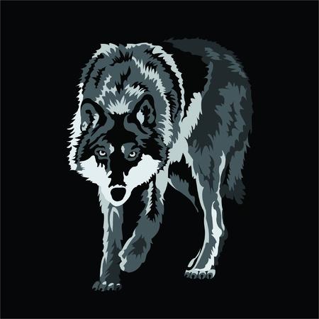 animals hunting: wolf Illustration