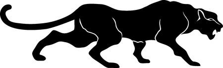 panthers: black Panther, leopard, walks