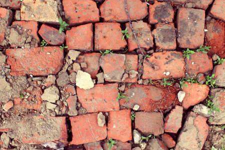 bricklaying from broken red brick with sprouted grass