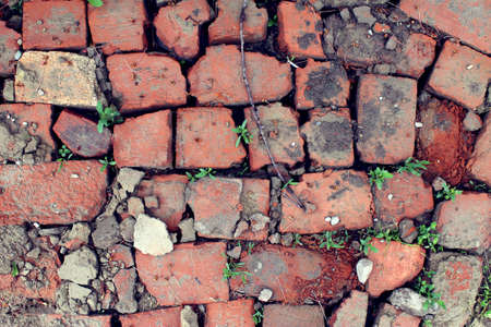 bricklaying from broken red brick with sprouted green grass 写真素材