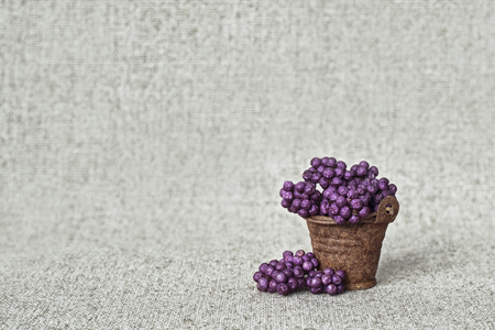 Sluggish purple berries of a beautiful fruit tree in a rusty bucket on a canvas background - still life in rustic style
