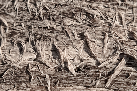 The texture of the cracked wood fibers and chips in the sun