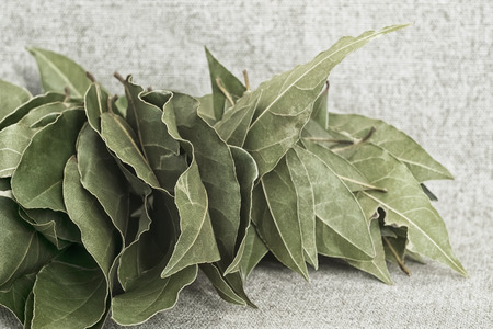 A bunch of dried Bay leaves on the background of the canvas – a simple still life in rustic style Reklamní fotografie
