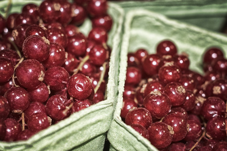 Red currant berries lie in green paper trays on the market close-up Reklamní fotografie