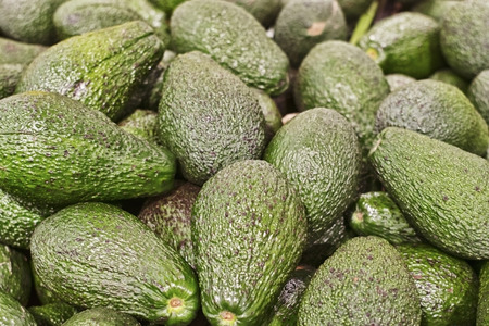 A lot of green avocado fruit lie on the counter of the store