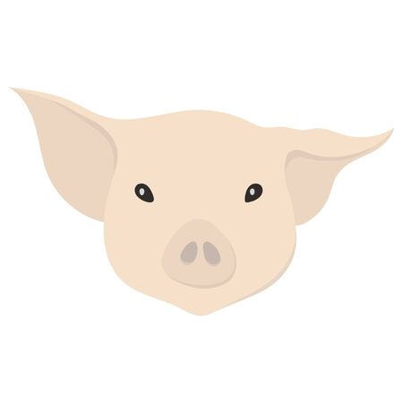 Vector illustration of beige pig head in flat style. Ilustrace