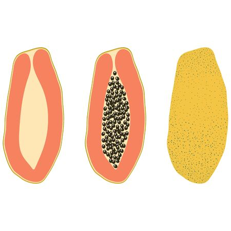 Set of three types of yellow papaya – half, with bones, in the skin. Vector illustration.
