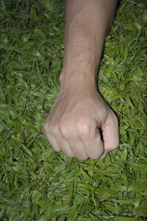 wisp: handle  grass stranglehold hand clasp wisp