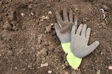 rightwing: Gloves Stock Photo