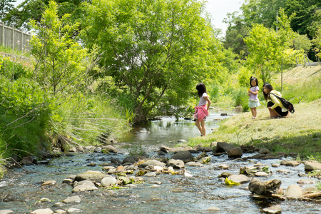 Parents and children playing in the river