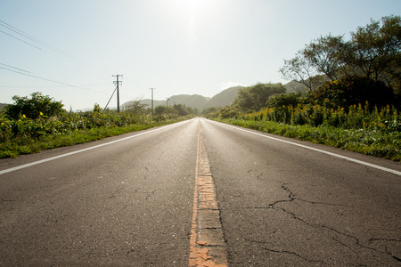 pulled over: Straight road