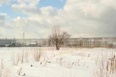 vacant land: Winter landscape Stock Photo