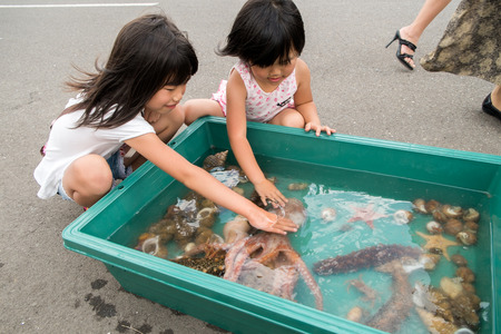 Children touch the creatures of the sea