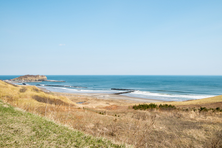 weed block: Coastal scenery