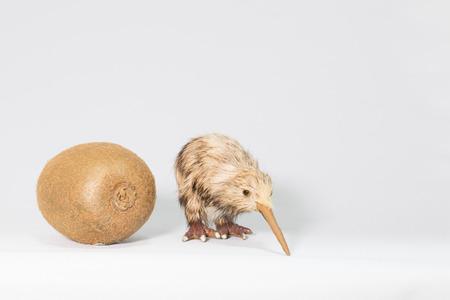 kiwi fruta: Kiwi y kiwi