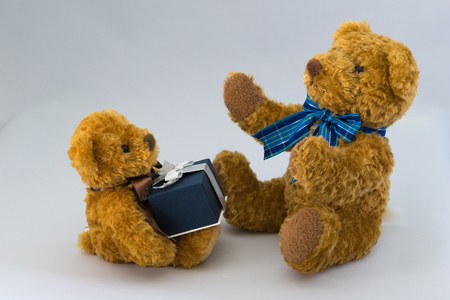 Stuffed toy of parent and child 写真素材
