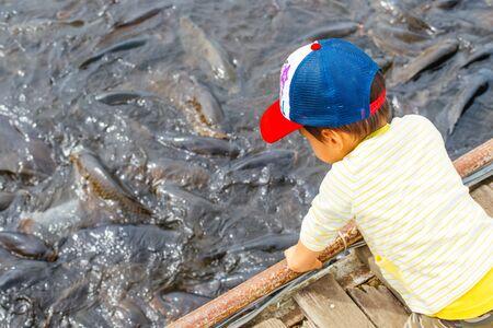 幼児を見ている魚 写真素材