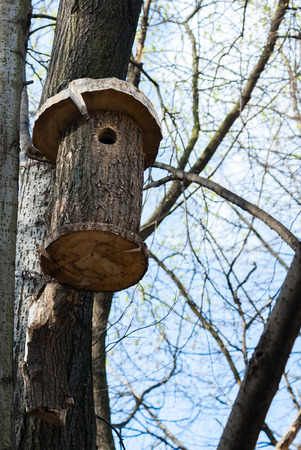 winter escape: Wooden birdhouse made with your own hands mounted on wood