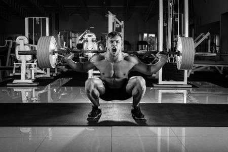 musculation: Man at the gym. Execute exercise squatting with weight, in gym Stock Photo