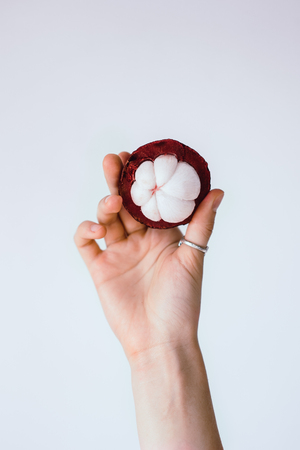 Woman hand holding  purple mangosteen on white background Stock Photo