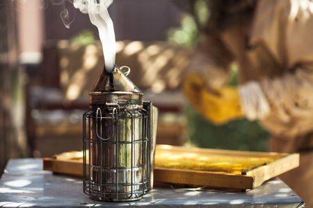 Beekeeping,Wooden beehive and bees, Bee smoke sprayer.