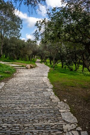 Stone path in a park at Acropolis slope, Athens, Greece. 版權商用圖片