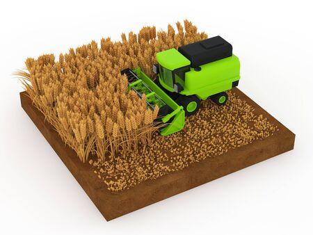 小麦コンバインを収穫します。