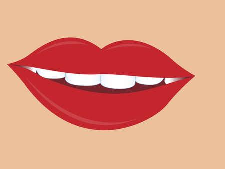 charming women lips.vector illustration Vector