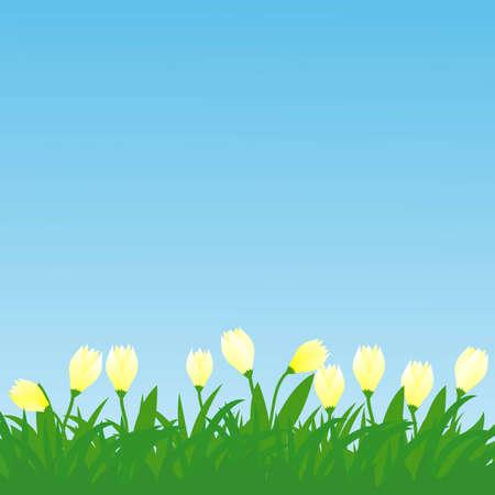 horisontal spring flowers and grass illustration