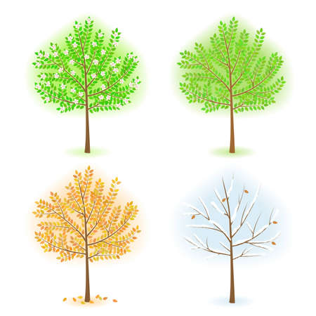 vernal: vector stylized trees