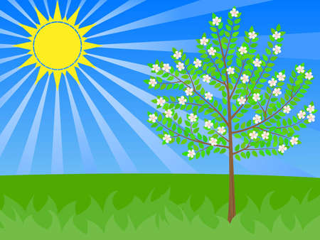 spring flowers illustration with the shining sun and flowering  tree Stock Vector - 11276941