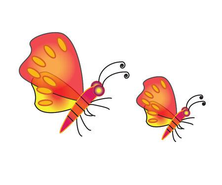 butterfly illustrator
