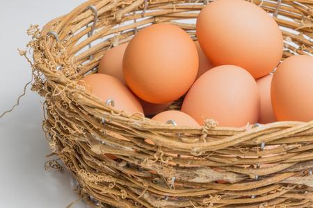 backgroud: Egg on white backgroud